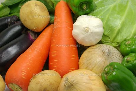 横位置のたくさんの野菜の写真素材 [FYI01222398]