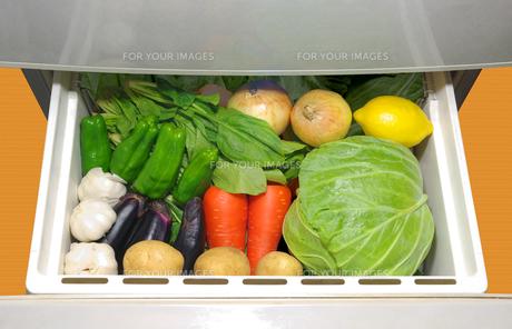冷蔵庫の野菜室に入っている野菜の写真素材 [FYI01222400]