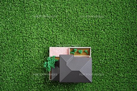 緑の人工芝に置いたミニチュアの家の写真素材 [FYI01222478]