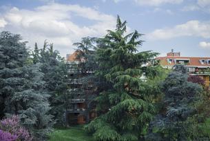 イタリアの庭園の写真素材 [FYI01222487]