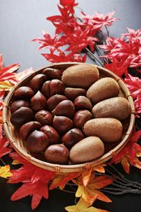 縦位置の紅葉のモミジと笊に入った栗とキウイフルーツの写真素材 [FYI01222505]
