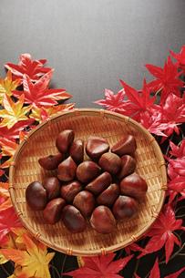 縦位置の紅葉のモミジと笊に入った栗の写真素材 [FYI01222507]