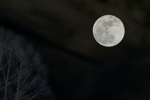 夜空に輝くスーパームーンの写真素材 [FYI01222520]