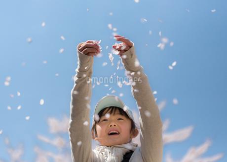 花吹雪の写真素材 [FYI01222553]