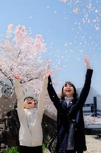 桜吹雪の写真素材 [FYI01222560]