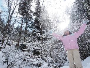 雪吹雪の写真素材 [FYI01222561]
