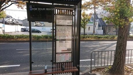 バス停と道と初冬の写真素材 [FYI01222579]
