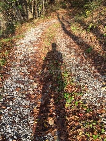 山の中の人の影の写真素材 [FYI01222771]