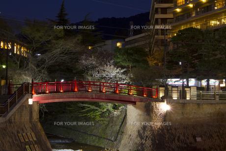 有馬温泉 ねね橋 夜景の写真素材 [FYI01222869]