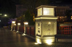 有馬温泉 太閤橋 夜景の写真素材 [FYI01222870]