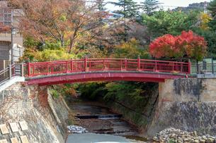 有馬温泉 ねね橋と紅葉の写真素材 [FYI01222887]