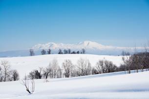 雪山と青空 大雪山の写真素材 [FYI01222901]