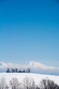 雪山と青空 大雪山の写真素材 [FYI01222903]