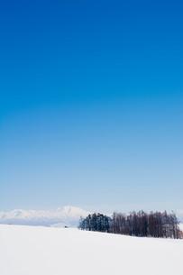 雪山と青空 大雪山の写真素材 [FYI01222908]