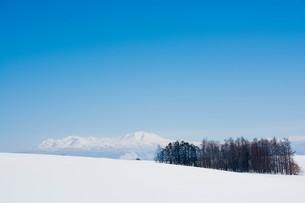 雪山と青空 大雪山の写真素材 [FYI01222909]