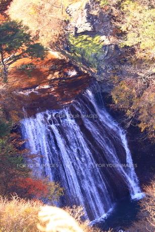 信州秋の景色の写真素材 [FYI01222983]