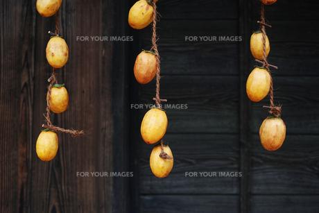 軒先に吊るした干し柿にする柿の写真素材 [FYI01223014]