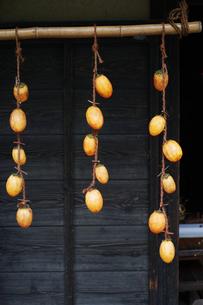 軒先に吊るした干し柿にする柿の写真素材 [FYI01223021]