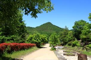有馬富士公園の写真素材 [FYI01223123]