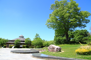有馬富士公園の写真素材 [FYI01223124]
