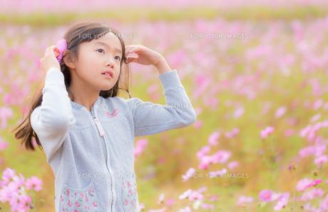花畑の中の少女の写真素材 [FYI01223192]