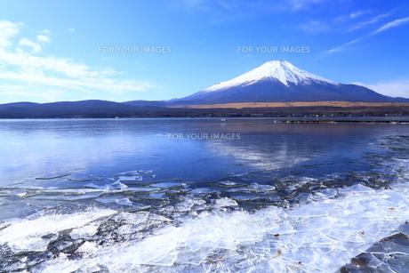 冬の山中湖の写真素材 [FYI01223202]