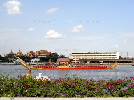 タイ ロイヤルバージの写真素材 [FYI01223424]