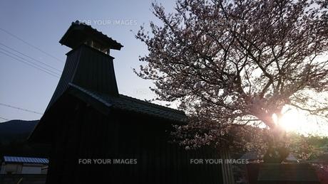 夕方の火の見櫓(春)の写真素材 [FYI01223436]