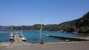 春の漁港の写真素材 [FYI01223437]