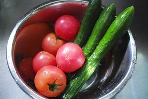 ステンレスのボウルに入ったトマトとキュウリの写真素材 [FYI01223475]