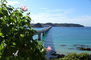 角島大橋の写真素材 [FYI01223509]