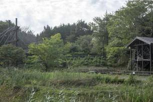 秋の木々の写真素材 [FYI01223677]