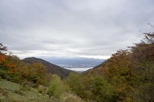 秋の木々と空の写真素材 [FYI01223875]