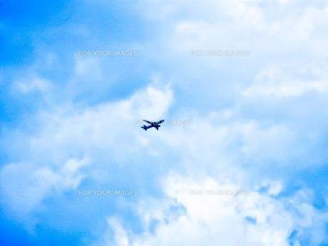 空の写真素材 [FYI01223972]