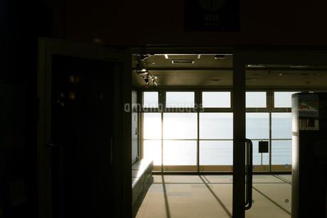 差し込む光の写真素材 [FYI01224041]