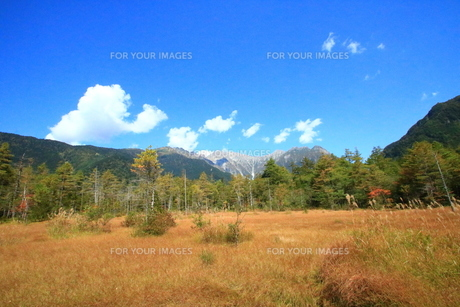 上高地の秋の風景の写真素材 [FYI01224091]