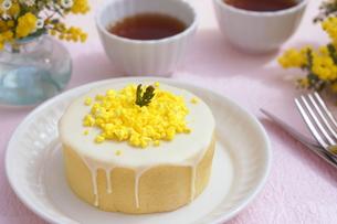 ミモザのケーキの写真素材 [FYI01224332]