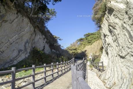 岩と木と空の道の写真素材 [FYI01224391]