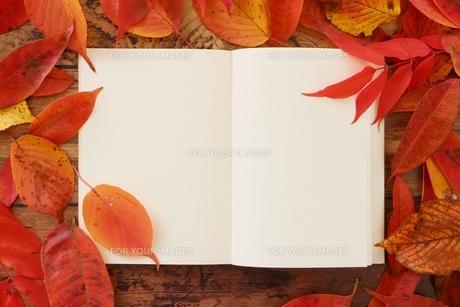 晩秋 落ち葉とノートの写真素材 [FYI01224618]