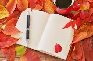 晩秋 落ち葉とノートの写真素材 [FYI01224619]