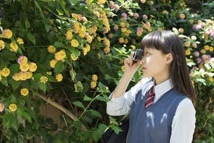 女子高生 花の写真素材 [FYI01224707]