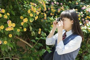 女子高生 花の写真素材 [FYI01224708]