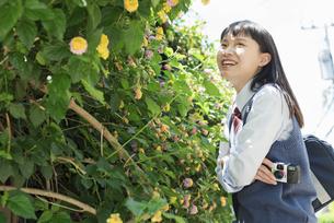 女子高生 花の写真素材 [FYI01224710]