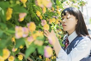 女子高生 花の写真素材 [FYI01224713]