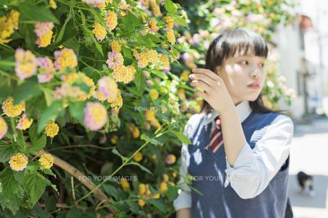 女子高生 花の写真素材 [FYI01224716]