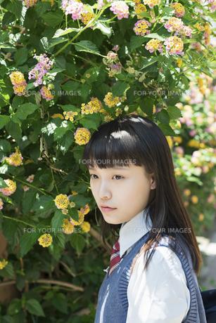 女子高生 花の写真素材 [FYI01224718]