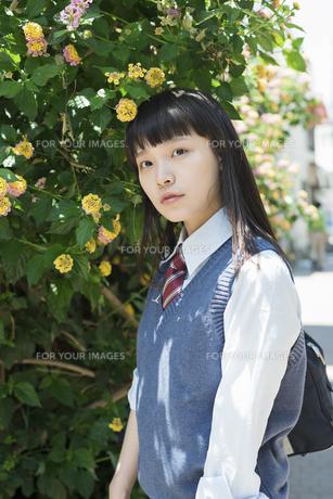 女子高生 花の写真素材 [FYI01224719]