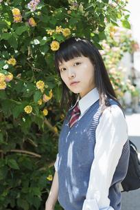 女子高生 花の写真素材 [FYI01224720]