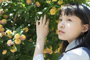 女子高生 花の写真素材 [FYI01224724]