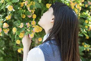 女子高生 花の写真素材 [FYI01224727]